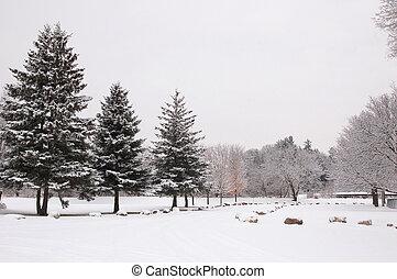 Witner park