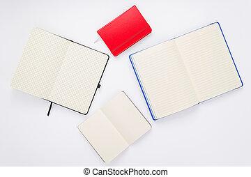 witte , aantekenboekje, achtergrond