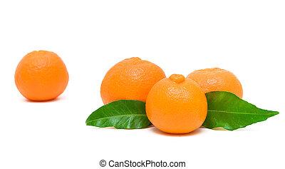 witte achtergrond, rijp, mandarijnen, vrijstaand