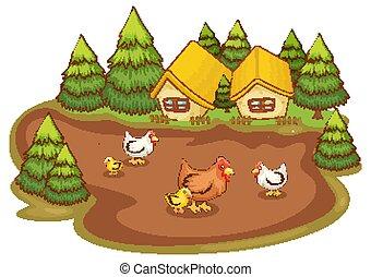 witte achtergrond, woning, kippen