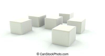 witte , dozen