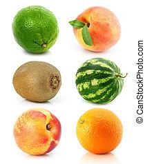 witte , fruit, vrijstaand, verzameling