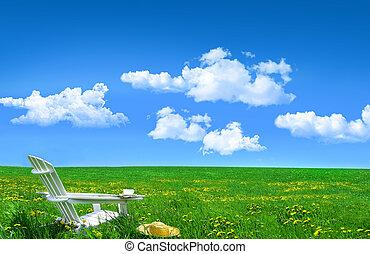witte , houten stoel, en, stro hoed, in, een, akker, van, paardebloemen