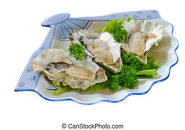 witte , oesters, achtergrond