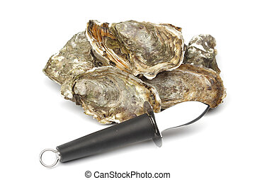 witte , oesters, mes