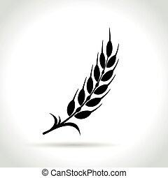 witte , tarwe, achtergrond, pictogram