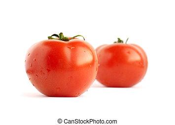 witte , tomaten, twee, achtergrond, vrijstaand