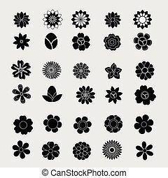 witte , vector, black , bloem
