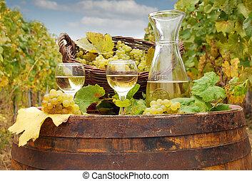 witte wijn, en, druif
