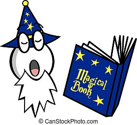 wizard with magic book