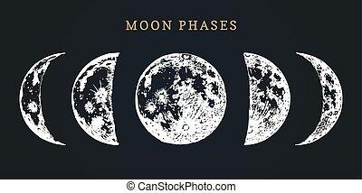 wizerunek, wektor, tło., nowy, fazy, czarnoskóry, ręka, pociągnięty, cykl, księżyc, pełny, ilustracja