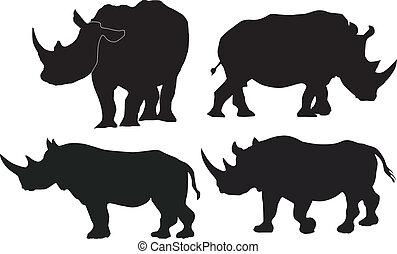 wizerunki, wektor, zbiór, nosorożec