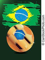 wm, brazília, 2014, világ, brasil