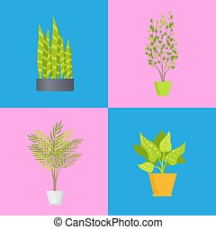 wnętrzarstwo, rośliny, komplet, wektor, ilustracja