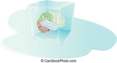 wnętrze, marznąć, sześcian, lód, mózg, ludzki