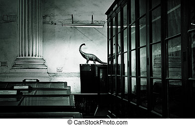 wnętrze, niejaki, muzeum