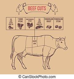 wołowina, rocznik wina, rzeźnik, wektor, skaleczenia, układ