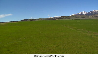 Wobbly aerial shot with green field and snow mountains in distance