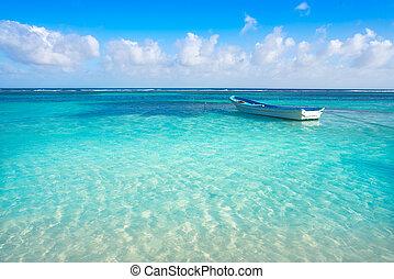 woda, karaibska plaża, tropikalny, turkus