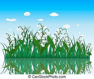 woda, kwiat, trawa, powierzchnia