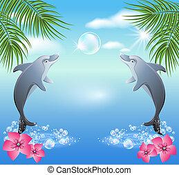 woda, skakanie, delfiny