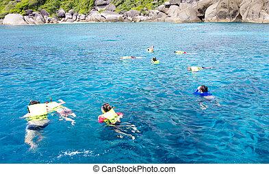woda, snorkeling, na, rafa, czysty, koral