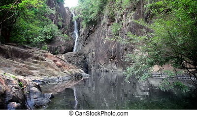wodospad, dżungla