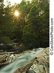 wodospad, zachód słońca, las