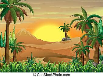 woestijn, bos