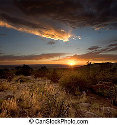 woestijn, ondergaande zon , in, albuquerque, new mexico