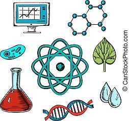 wohnung, biologie, begriff, design