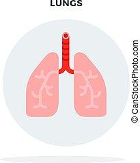 wohnung, lungen, graue , freigestellt, kreis, mann, vektor