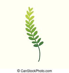 wohnung, pflanze, abstrakt, farn, vektor, grün, ikone