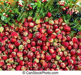 wohnung, waldbeeren, lingonberry, erdbeer, legen, crowberry