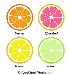 wohnung, zitrone, lebensmittel, slices., abbildung, orange, pampelmuse, limette