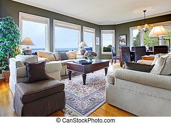 wohnzimmer, klassisch, viele, windows., grün, nett, möbel