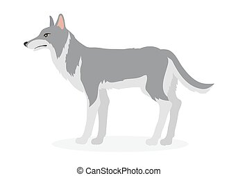 Wolf Cartoon Vector Illustration in Flat Design - Wolf...