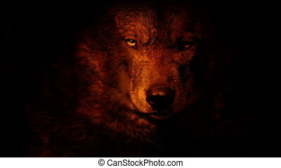 Wolf Growls In Fire Abstract - Wolf face growling and...