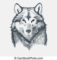 Wolf head grunge hand drawn sketch vector illustration