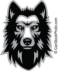 wolf head - Animal head vector illustration