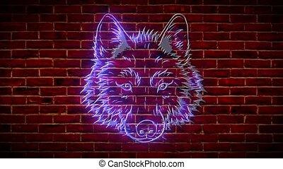 Wolf head neon sign. Purple wild wolf bright emblem. video...