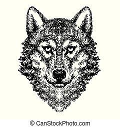 Wolf head vector logo (26)