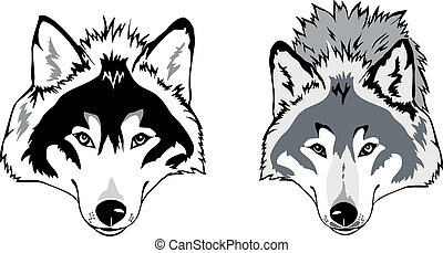 Wolf head vector - Wolf head  as a simbol,  illustration.