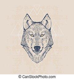 Wolf head, vintage hand drawn illustration