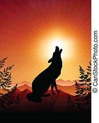 Wolf Howling on sunset background