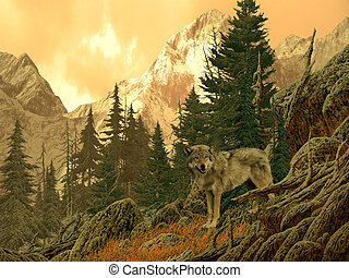 Wolf - Image from an original 18x24 of a wolf in the Rocky...