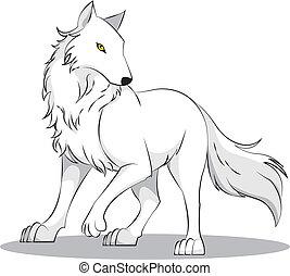 wolf - white wolf