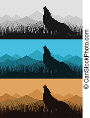 Wolf in mountains2