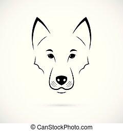 Wolf Muzzle on white background.