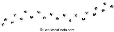 Footpath trail of animal